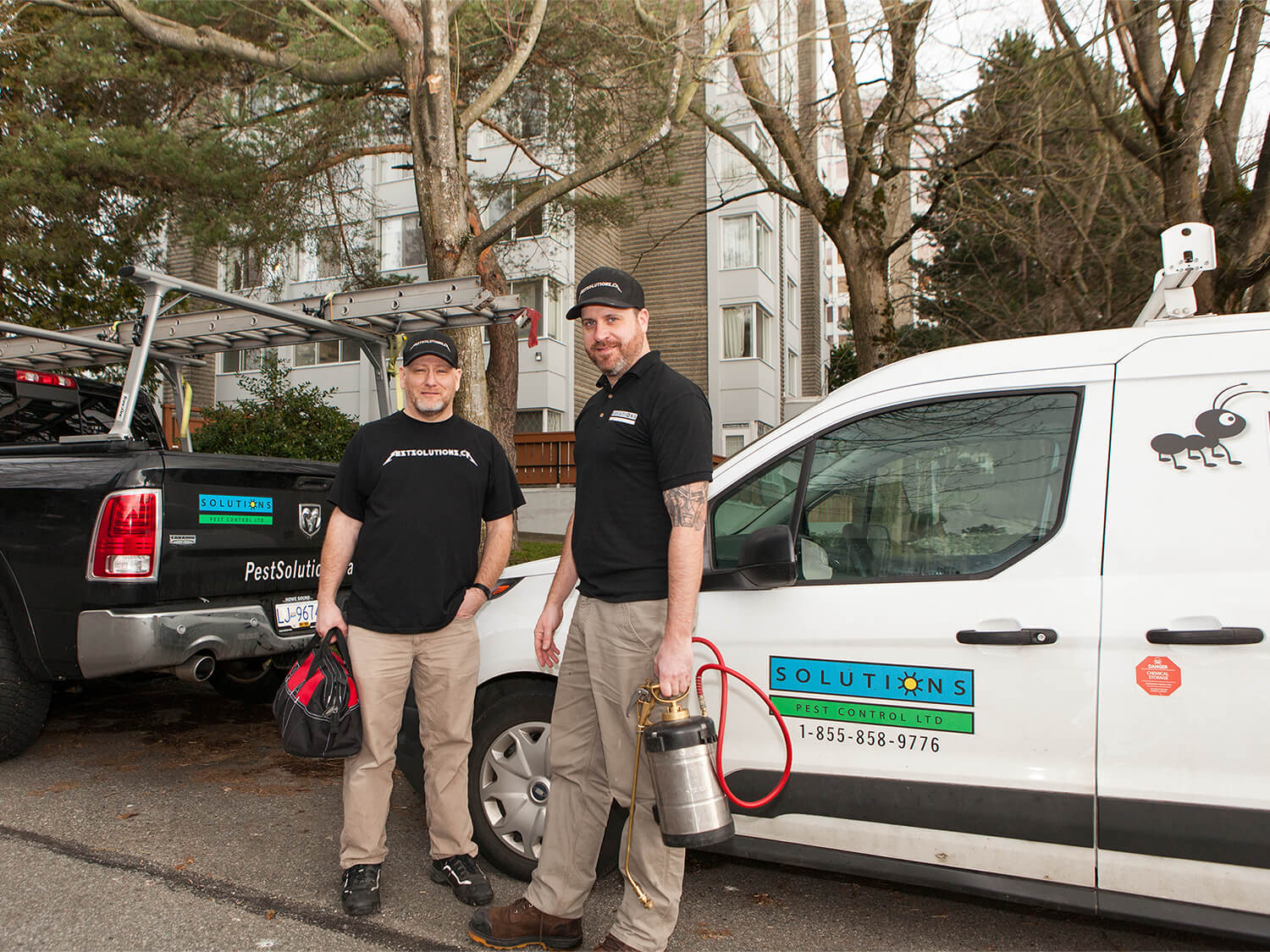Pest Control Vancouver North Shore Squamish Whistler Solutions Pest Control