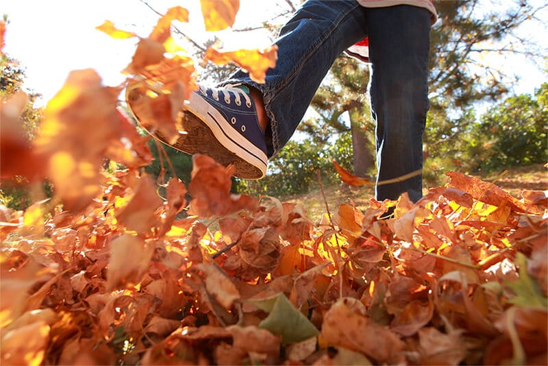joyfull, care free child kicking pile of fall leaves